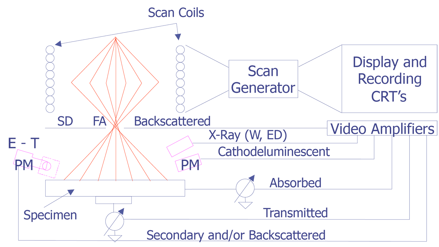 Scanning electron microscope semitracks schematic illustration of scanning system of the scanning electron microscope abbreviations fa final aperature sd solid state electron detector et ccuart Gallery